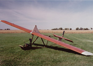 1932 Mead Primary Glider